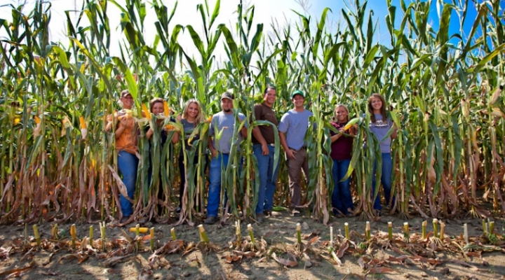 EKU students pose between stalks of corn