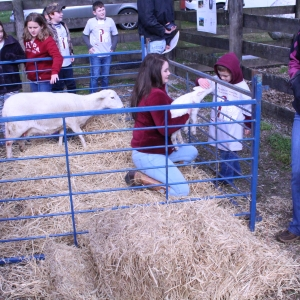 Petting area for the 'Day at the Farm' event